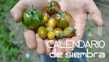 Calendario de siembra de Invasión Verde